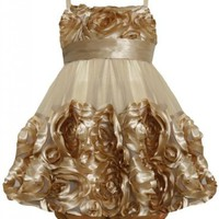 Bonnie Jean Baby 12M-24M Gold Metallic Bonaz Rosette Mesh Bubble Dress