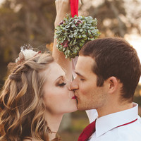 Frosted Mistletoe Kissing Ball