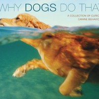Why Dogs Do That (Deluxe Edition): A Collection Of Curious Canine Behavoirs