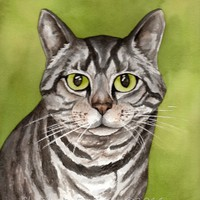 Blank greeting card pack of five prints from original watercolor pets