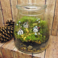 Large Miniature Landscape, Live Moss Terrarium with tiny raku fired ceramic houses and mushrooms- Handmade by Gypsy Raku