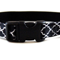 Black Dog Collar Adjustable Sizes (XS, S, M)