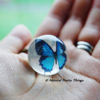 naturalprettythings